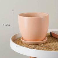 L'Occitane Limited Edition Almond Set