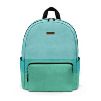 DailyObjects Three Stripes Teal City Compact Backpack