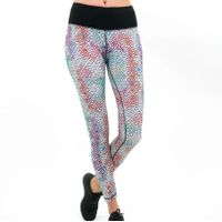 Satva Chaq Legging - Multi-Color