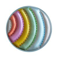 PopSockets Swappable Premium Popgrip- Stitched Grand Rainbow Of Funk