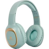 Zebronics Zeb Paradise (Green) headphone