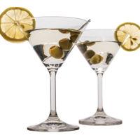 Bohemia Crystal Lara Martini Glass Set, 210ml, Set Of 6, Transparent