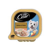 Cesar Adult Wet Dog Food, Salmon & Potato Tray