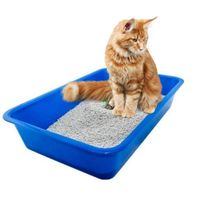 PetCrux Exclusive Cat Litter Tray Litter Tray