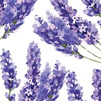 French Lavender & Honey