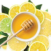 Lemon + Honey