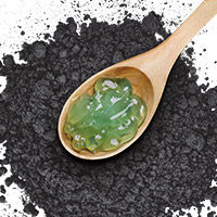Black Mud + Aloe Vera
