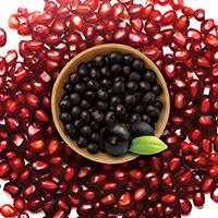 Acai Berry + Pomegranate