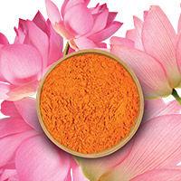 Lotus Flower + Tiger Lily