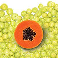 Gooseberry + Papaya