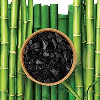 Charcoal + Bamboo