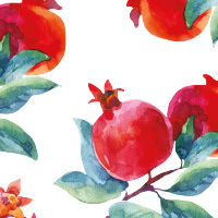 Pomegranate & Aloe